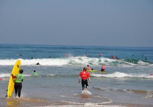 Ecoles de surf